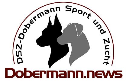 DSZ - Dobermann Sport und Zucht